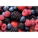 Lote de 8 Plantas de Frutos Silvestres
