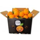 15 KILOS Naranja Ecologica LANE Late. Mixta