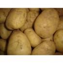 Patata Siembra Kenebec Granel