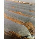 Manta Térmica Huerto 3,20 X 10m