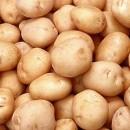 Patatas de Siembra Kennebec Ecológica 25kg