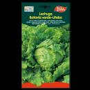 Lechuga Batavia Verde-Utebo