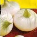 Cebolla Barletta. 500 Gramos.