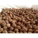 Nueces Cáscara de Valonga en Saco de  2 Kg