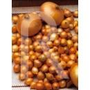 Blister Bulbos Cebolla de Mesa Amarilla-250...