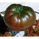 Planta Tomate Tomaku Extra en Maceta de 10 C...
