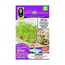 Semilla Alfalfa Brotes Ecologicos