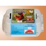 1/2 Docena de Huevos Ecológicos Clase L