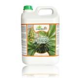 Agrobeta Cannabis Floración, 5L