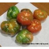 Semillas Tomate Raf (Tomate Marmande 100Semilas)