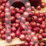 sobre Bulbo Cebolla de Mesa Comred-Roja-350 Gr