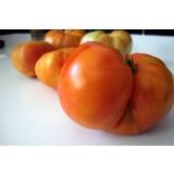 6 Kg de Tomate Ecológico