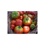 Tomate para Ensalada Espalda Verde Ecológico 0,2g