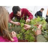 Curso Jardinería Sostenible. Barcelona Ciudad. 25 Mayo 2013