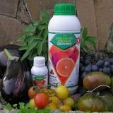 Extracto de Cítricos Bio 150 100ml (Hongos y Bacterias)