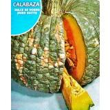 Calabaza DULCE de HORNO Buen Gusto. Envase Hermético de 3 Gr/8-10 Semillas.
