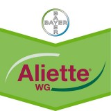 Aliette WG Huerta 45 GRS.