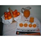 Mandarinas de Zumo Caja de 15 Kilos