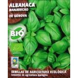 Albahaca de Génova Ecologico. 5 Gr. 2000 Semillas-Seeds-Graines Bio Ecológicas