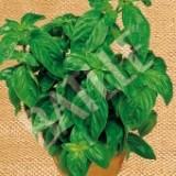 Albahaca de Hoja Grande. Semillas Ecológicas 1,5 Gr