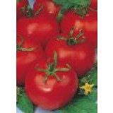 Semillas Tomate Tres Cantos 10Grs