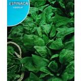 Espinaca Viroflay Esmeralda. Envase Hermético de 10 Gr/900 Semillas