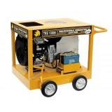 Generadores Trifásicos Gasolina Benza TRS 12000