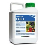 Eagle, Fungicida Antioidio Kenogard