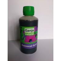 Corrector  (Aminocal-Forte)