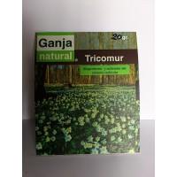 Protector (Tricomur)