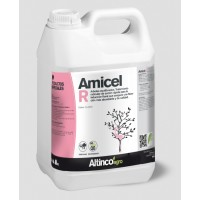 Amicel R, Altinco