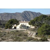 Finca con Posibilidad de Montar un COTO de CAZA (Provincia de Murcia)