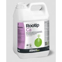 Rootip Ca, Altinco