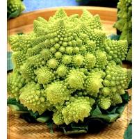 Bróculi Romanesco Natalin. Envase de 8 Gr.