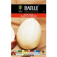 Melon Blanco Ribatejo-500Gr
