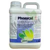 Phosycal Solución de Fósforo y Calcio Fertiga