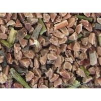 Semillas JARA del Libano Cistus Libanotis