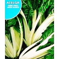 Acelga Verde Penca Ancha Blanca. Envase Hermético de 10 Gr / 600 Semillas