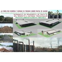 Hornos de Carbonización Artesanal E Industrial para Fabricar Biochar y Carbón Vegetal.