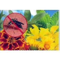 Mezcla de Flores Anti - Mosquitos. 1 Gr. de S
