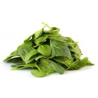 Espinaca BABY Leaf. Tiernas Hojas. 10000 Semi