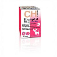 Hyalophyt MSM para Perros Razas Mini 90 Comprimidos