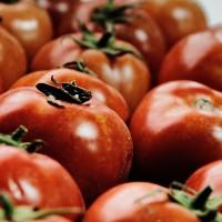 Tomate F1 Big Red