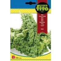 Kale Half Tall Curled - 200 Semillas