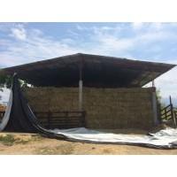 HENO y Semilla de Angleton Climacuna al Mejor Precio SIN Intermediarios