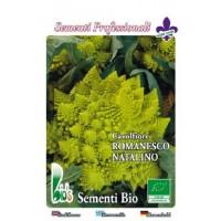 Brocoli Romanesco Eco - 10 Gr Semillas Ecológ