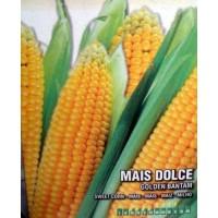 Maiz Dulce Golden Bantam. 100 Gr / 200 Semill