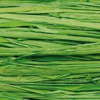 Rafia de Injertar - Verde
