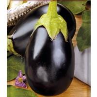 Berenjena Redonda Negra Black Beauty. Envase