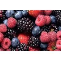 Lote de 9 Plantas de Frutos Silvestres